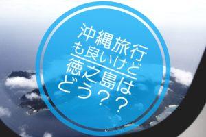 沖縄旅行 徳之島